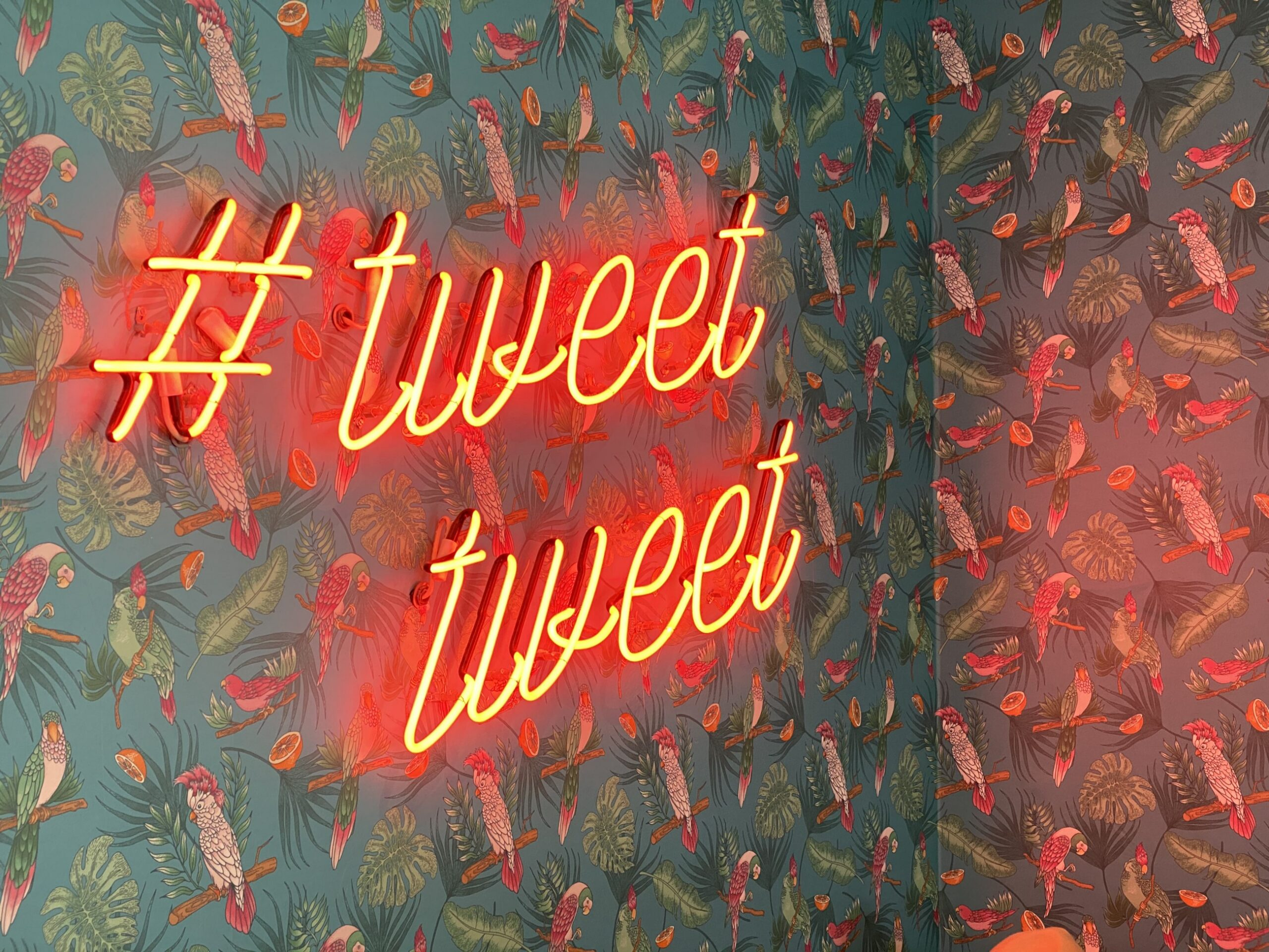 """Wall with pretty bird print wall paper on it. There's a neon sign that says, """"Tweet tweet"""" in red."""